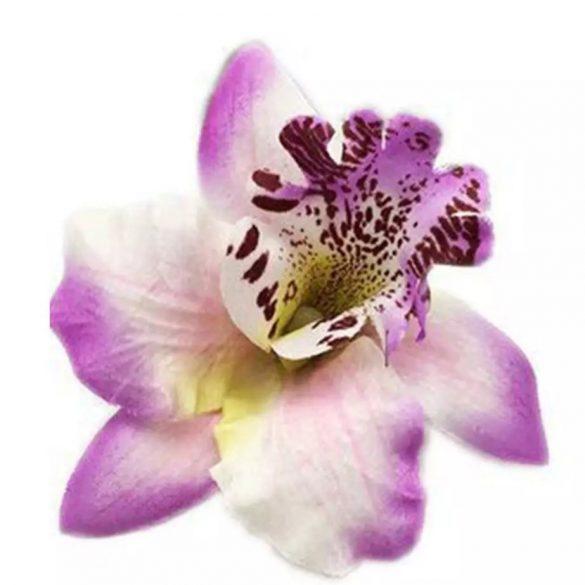 Lila orchidea hajdísz
